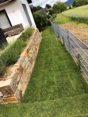 Garten mit Mauer und Zaun
