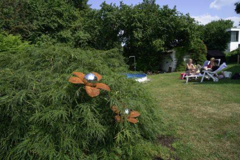 Gebüsch mit Deko und Blick auf Pool