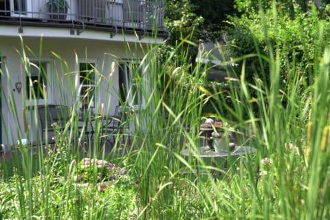 Hohes Gras im Garten mit Blick auf Haus