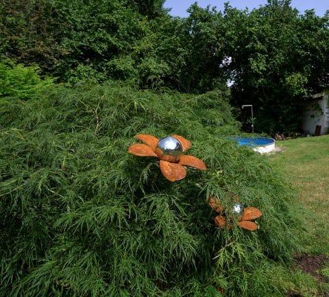 Gartensträucher und ein Pool im Hintergrund