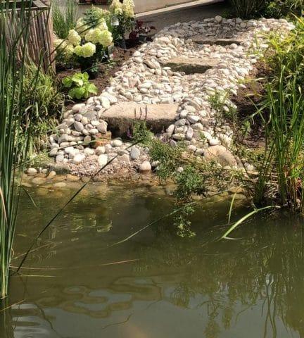 Teich mit Steintreppe
