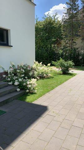 Vorgarten mit Treppenaufgang und Bepflanzung